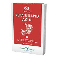 GSE REPAIR RAPID ACID 12 CPR