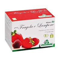 INFUSO FRAGOLA/LAMPONE 20 BUSTE
